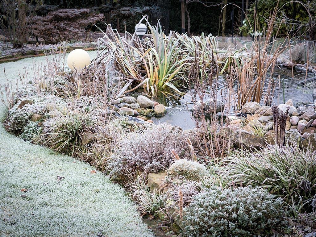 I lavori in giardino a gennaio
