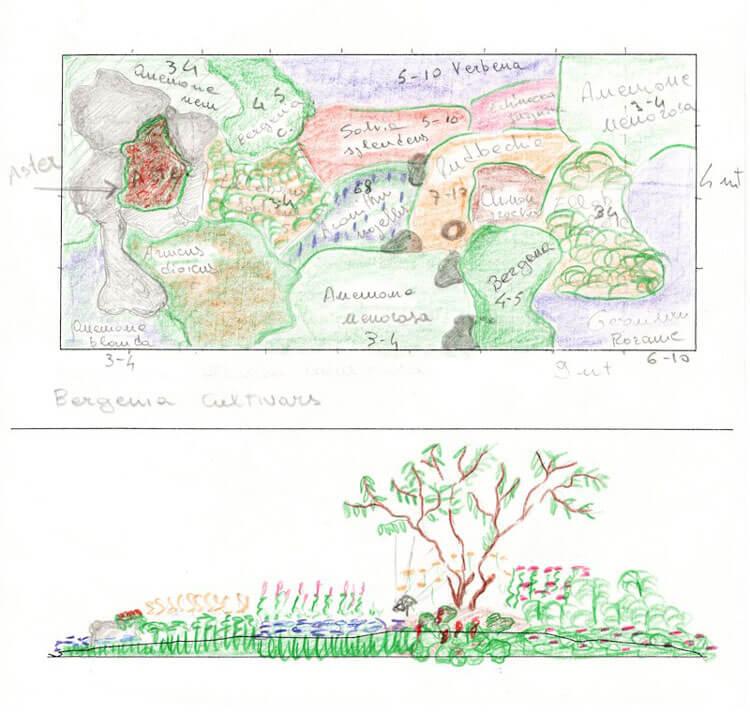 progettazione giardini Bellinzona